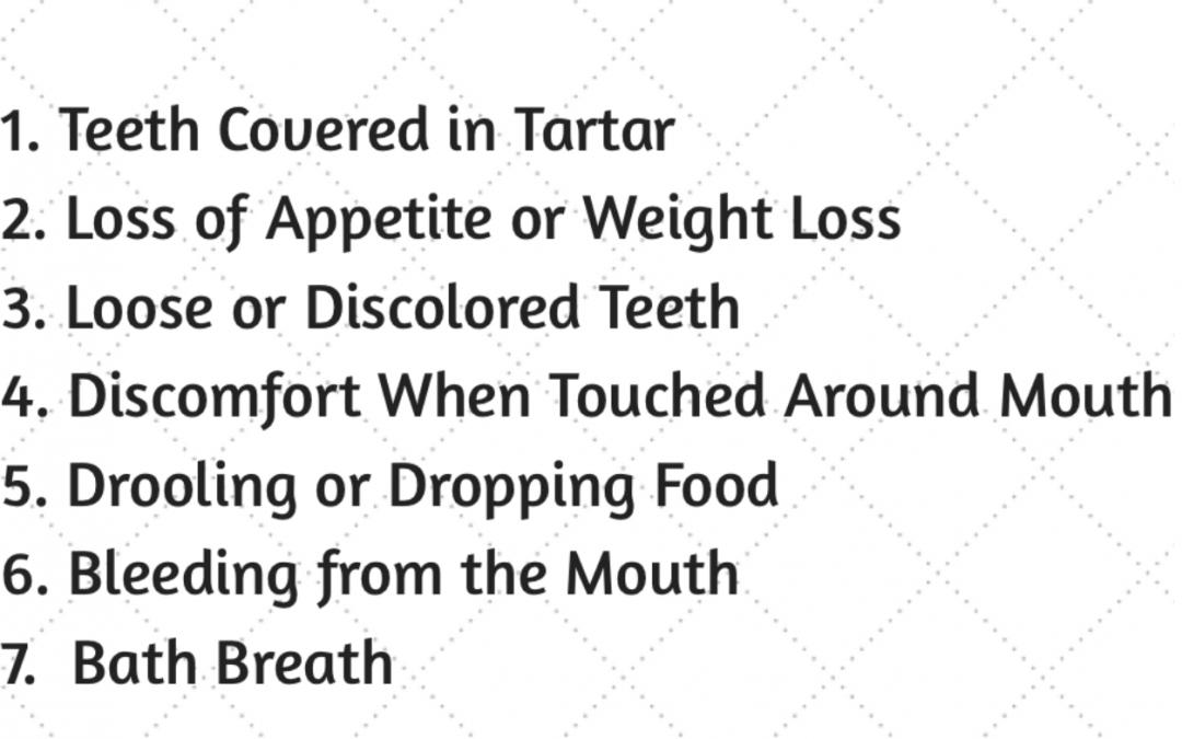 7 Signs of Dental Disease