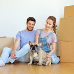 Tips to Make Moving With Your Pet Less Stressful