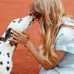 8 Pet-Friendly Places in Charleston